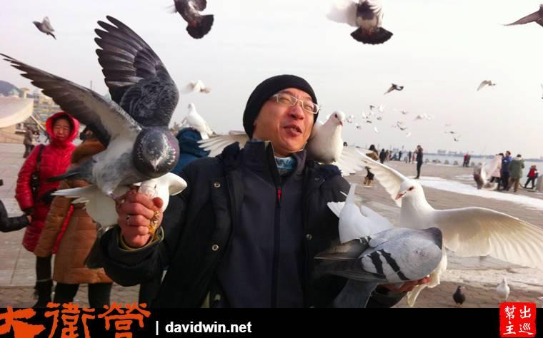 這裡的鴿子,完全不怕人,買了一袋飼料,結果就是完全被包圍