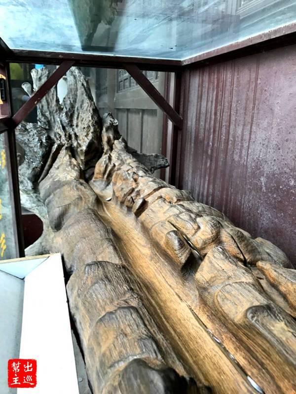 濟公羅漢神木