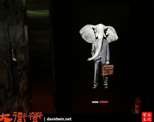 一出電梯就看到大象人,這是樓層電梯間的佈置