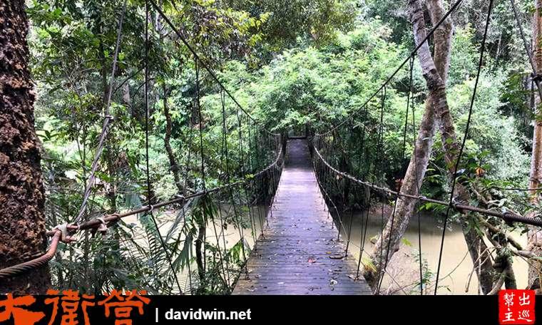 考艾國家公園吊橋