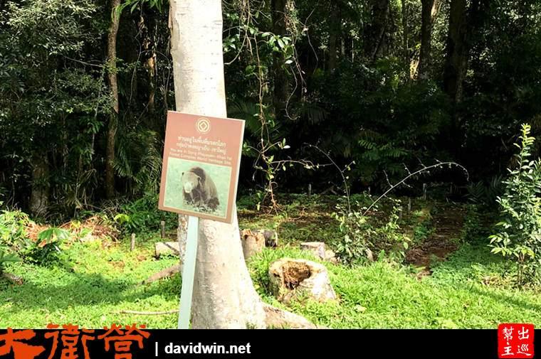 考艾國家公園熊出沒注意