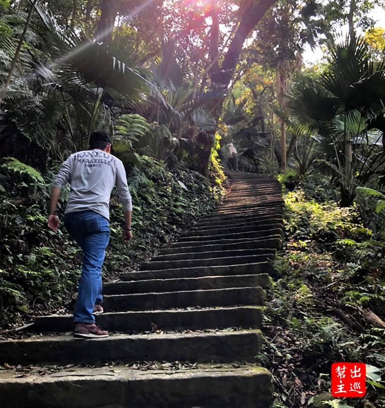大雄寶殿的右側會看到往山上走的步道