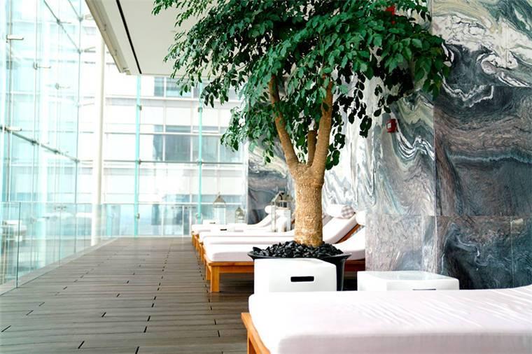 泳池畔的躺椅,設計面向整片的玻璃帷幕