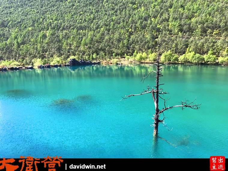 藍月谷的水源來自雪山的融雪,整個清澈到發出了不可思議的綠色
