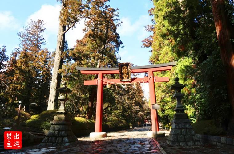 石階路與兩側參天的大樹,導引你前往這座饒富歷史的神社
