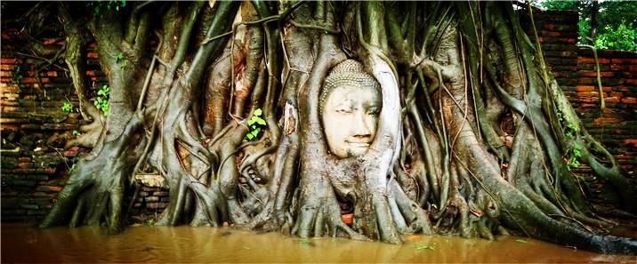 【泰國|攻略】瑪哈泰寺 Wat Mahathat