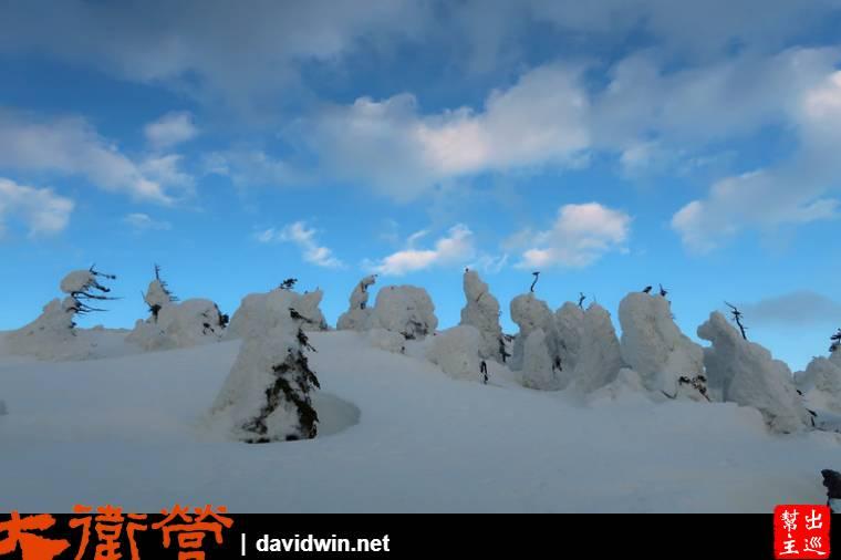 這一個個的雪堆,可都是被大雪覆蓋的樹木
