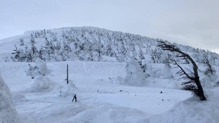 【日本 山形】滑雪、泡湯、樹冰一次滿足:藏王