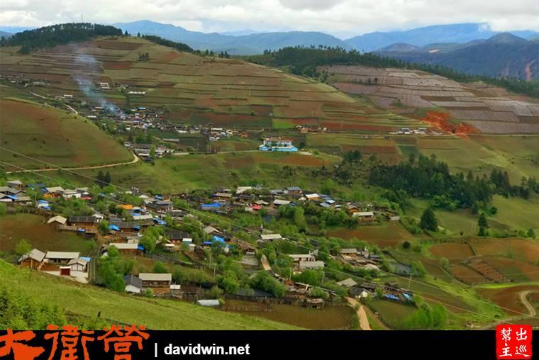 山勢不再險峻,取而代之的是綠色的農作物,與美麗的花海