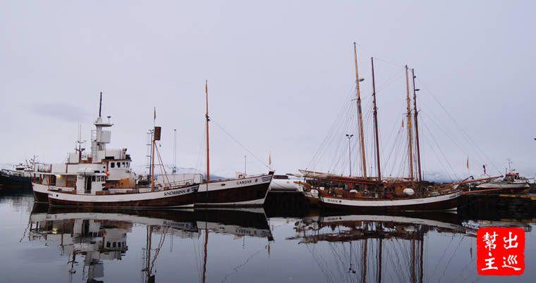 大部分都是賞鯨公司的船隊,一些有大型垝桿的船特別有味道