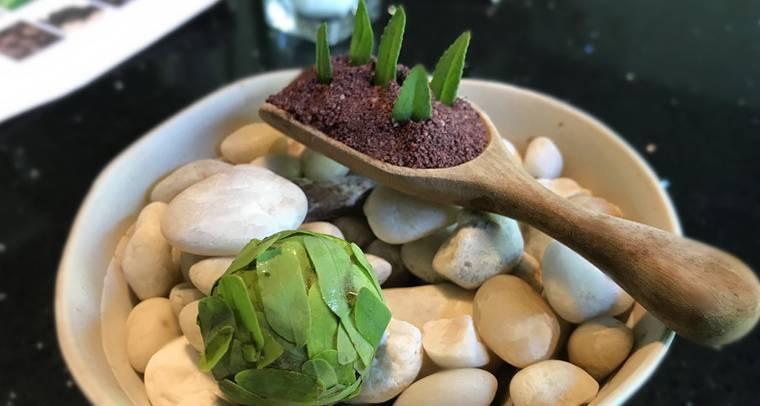 【曼谷 美食】天然食材無縫接軌之米其林推薦:Cuisine de Garden