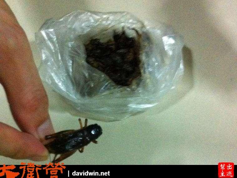 泰國炸蟋蟀