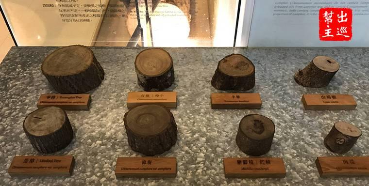臺灣博物館南門園區樟木展示