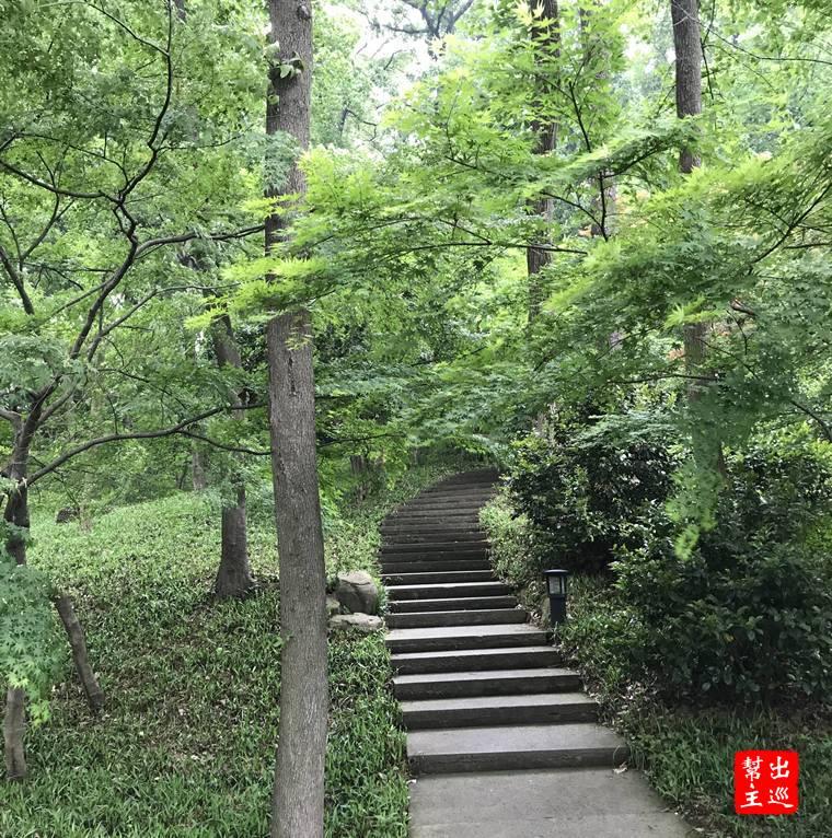 杭州西湖雷峰塔後山