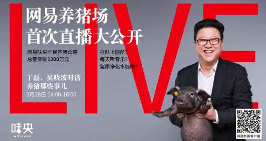 網易養豬場丁磊